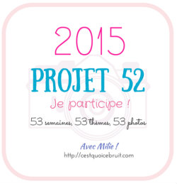 Projet52-2015-logo-cqcb-250 (4)